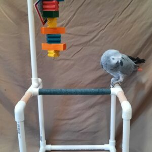 Short 1/2 PVC Bird Stand With Toy Hanger