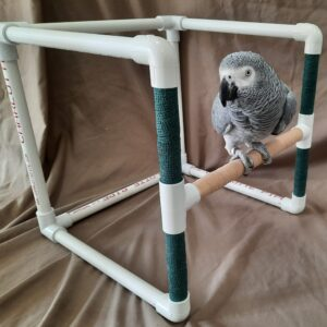 Medium Short PVC Bird Stand