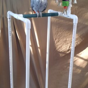1/2 PVC Bird Stand With Toy Hanger